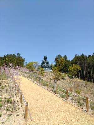 Todaibutsu